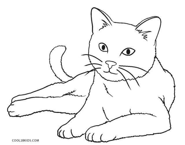 Brillantes Foto Von Nyan Cat Malvorlagen Katze Malen Illustration Katze Umrisszeichnungen