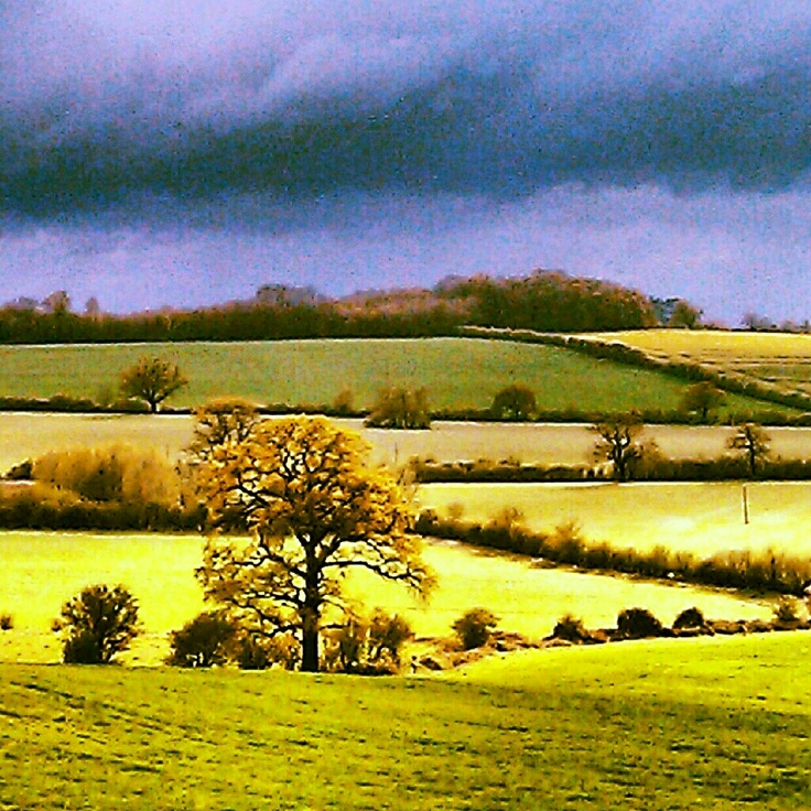60 Best Images About In The Countryside On Pinterest