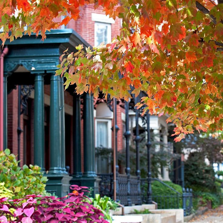 Fall colors at Virginia Commonwealth University #MyVCUfall