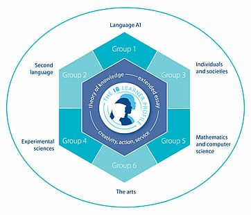 International baccalaureate hexagon