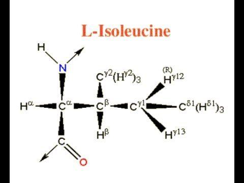 חומצת אמינו איזולאוצין, Isoleucine