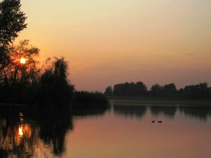 laghi di mantova (lunaria)