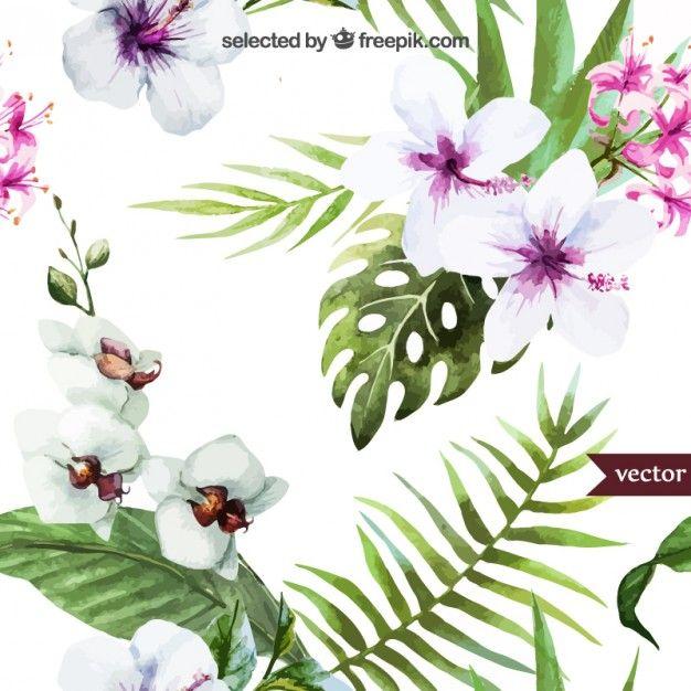 Pintados à mão plantas tropicais