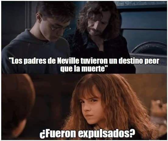 Todos lo pensamos, Hermione lo dijo. | 18 Memes de Harry Potter tan chistosos que hasta harán reír a Voldemort