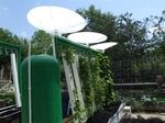 another rain barrel system for collecting rain water without gutters