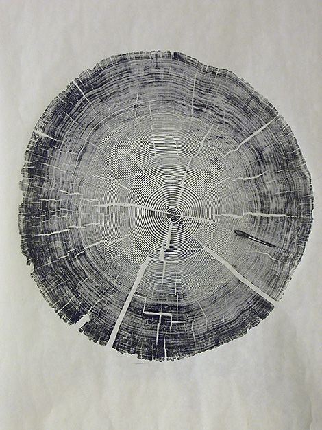 I love the concept of this cross-section of a tree as a tattoo... each ring represents a year of growth.