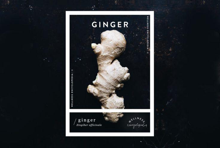 Wellness Encyclopedia: Ginger – Free People Blog | Free People Blog #freepeople