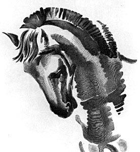 Γιάννης Κεφαλληνός, Κεφάλι αλόγου (1935). Ξυλογραφία σε όρθιο ξύλο