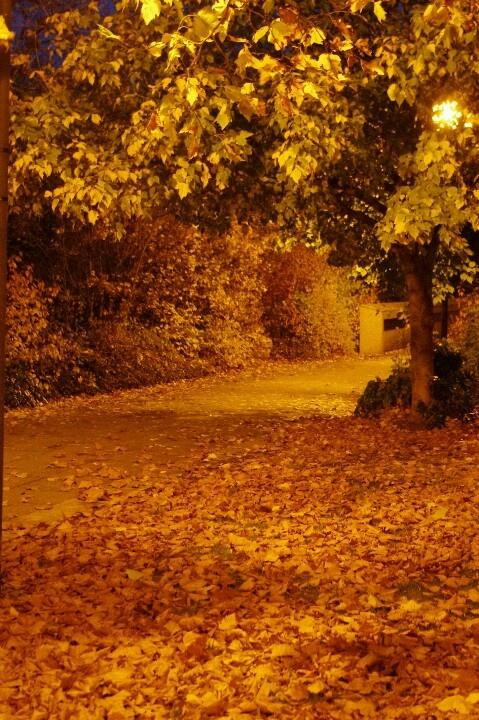 Milton Keynes in the fall
