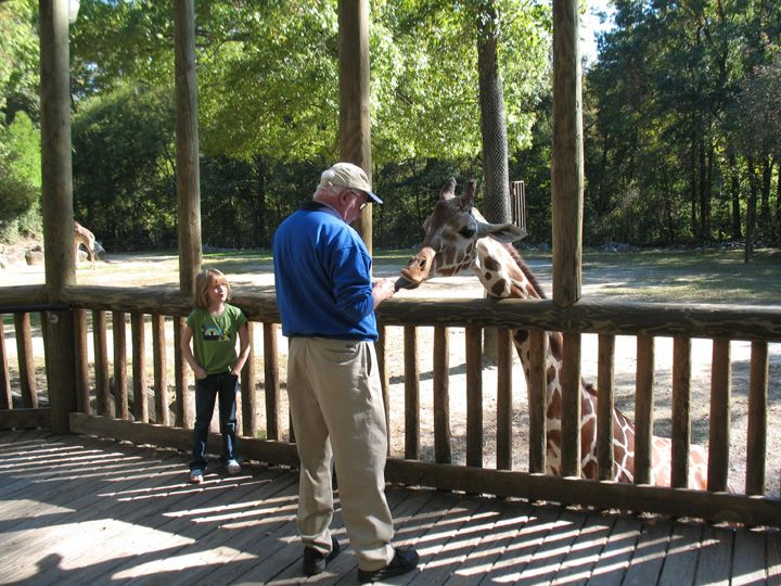 Things to Do in Columbia SC | TOP 10 THINGS TO DO IN COLUMBIA, SC