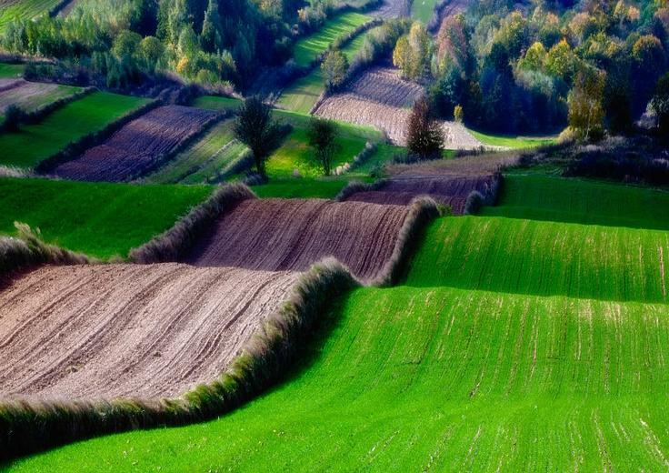Roztocze region, Poland - UNESCO Biosphere Reserve.