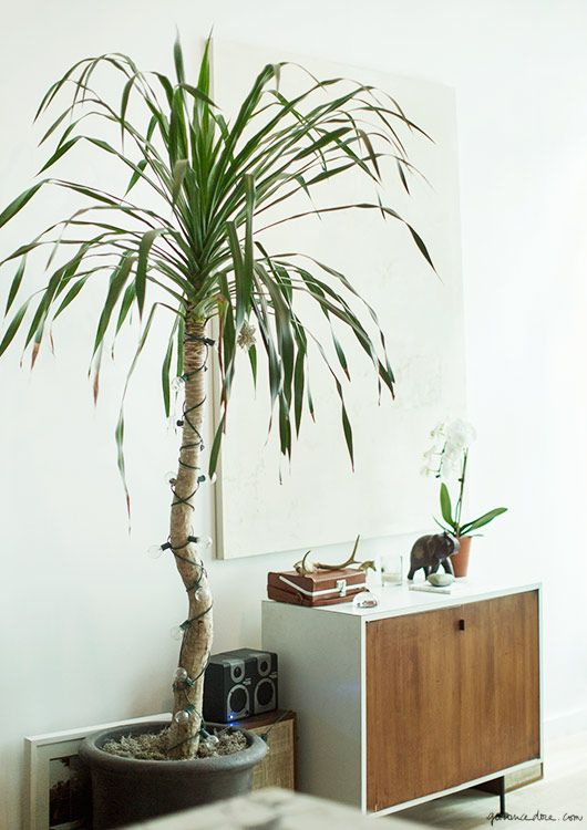 At Home with Lauren Cohan / Lauren Cohan, Interior, NYC / Garance Doré