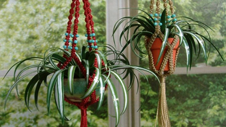 Have you been looking to buy macramé plant hangers only to find that no one has macramé plant hangers for sale anywhere?
