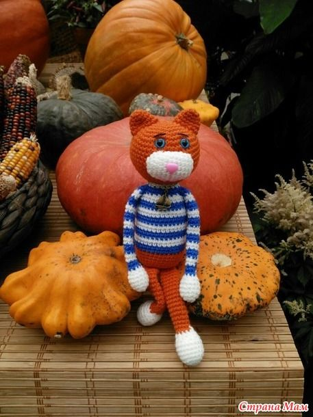 Осенью всегда появляются рыжие коты!