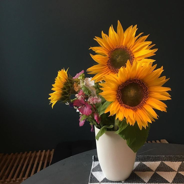 Ihanaa keskiviikon iltaa  #flowers #instaflower #flowerbucket #sunflower #auringonkukka #auringonkukkia #keittiö #kitchen #myhome #newhome #instahome #homedecor #decoration #interior #interiors #wall #wallcolors #seinämaali