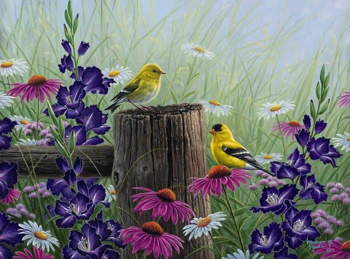 Ashley's Art Gallery - Goldfinch Meadow by Abraham Hunter, $300.00 (http://ashleyart.com/goldfinch-meadow-by-abraham-hunter/)