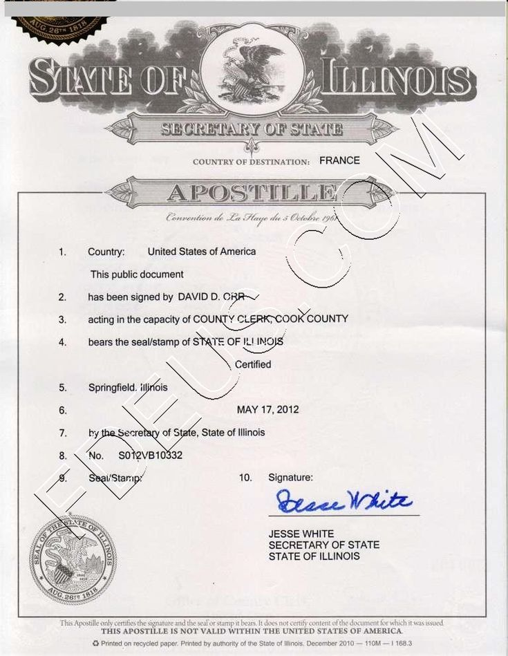 Illinois apostille. The following documents are acceptable for Illinois State Apostilles: documents notarized by an Illinois Notary Public;  certified copies of Birth certificates from the County Clerk, Local Registrar or Illinois Department of Public Health; certified copies of Marriage licenses from the County Clerk; certified copies of Divorce decrees from the Circuit Clerk; documents issued by Illinois Secretary of State