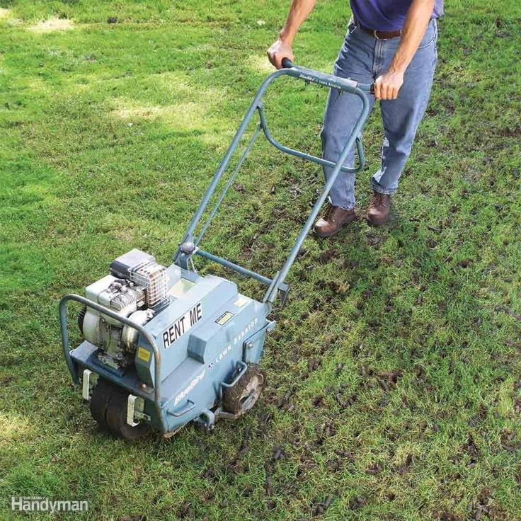 """Aerating"" simply means making holes in the ground by"