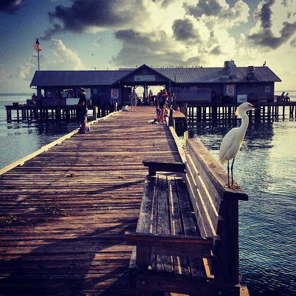 86 best vintage anna maria island images on pinterest for Key west fishing pier