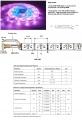Taśma Led RGB Magic, 83 programy rolka 5mb. | Sklep :: to nie jest zwykła taśma RGB jaką już widzieliście ....... jak sterować taśmą LED RGB ? Jej działanie kontroluje sterownik (również dostępny) mający 83 programy oraz prędkość regulowaną w zakresie 1-99 ........może to posłużyć do tworzenia naprawdę interesujących efektów. $116
