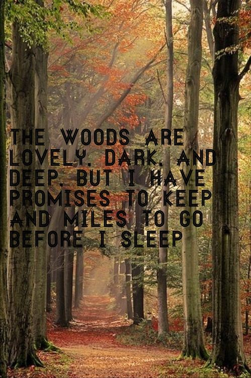 Not a quote I would have associated with running through the woods before, but Frost always did carry many meanings. His love of the wilderness is a great inspiration.
