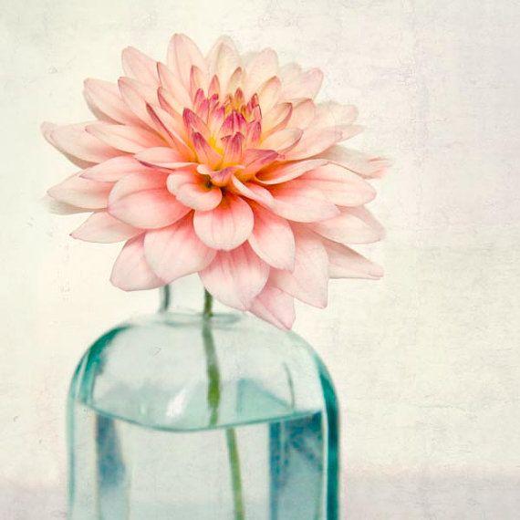 Flower Photography Botanical Print Fine Art by RockyTopPrintShop, $15.00