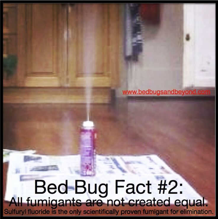 did you know not all fumigants are created equal? bed bug foggers