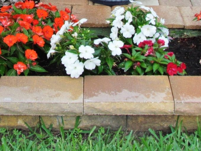 1000 ideas about flower bed borders on pinterest flower for Edging flower beds with edger