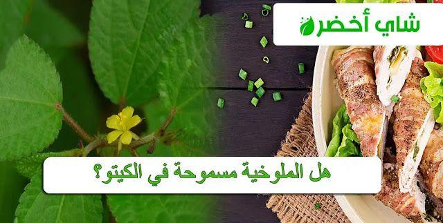 هل الملوخية مسموحة في الكيتو Herbs Keto Food