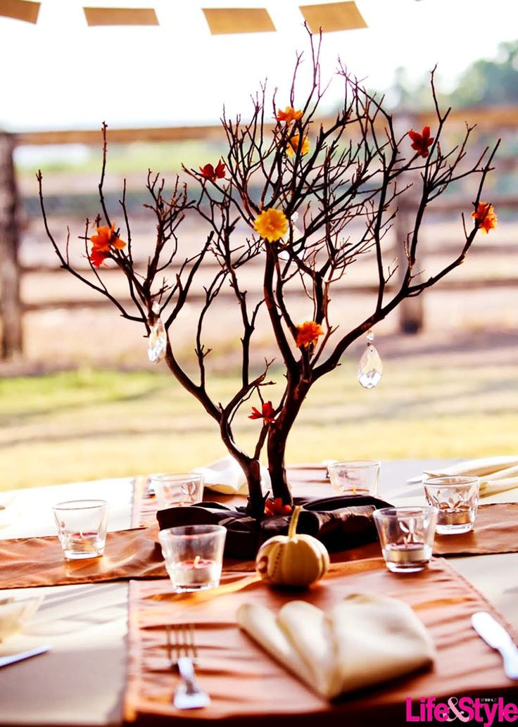 What are the 12 Ways To Use Branches In Your Home Décor