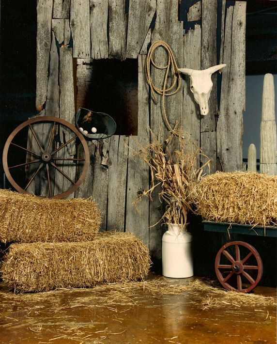 Western theme party props country and western decorations for a party the - Decor shooting photo ...