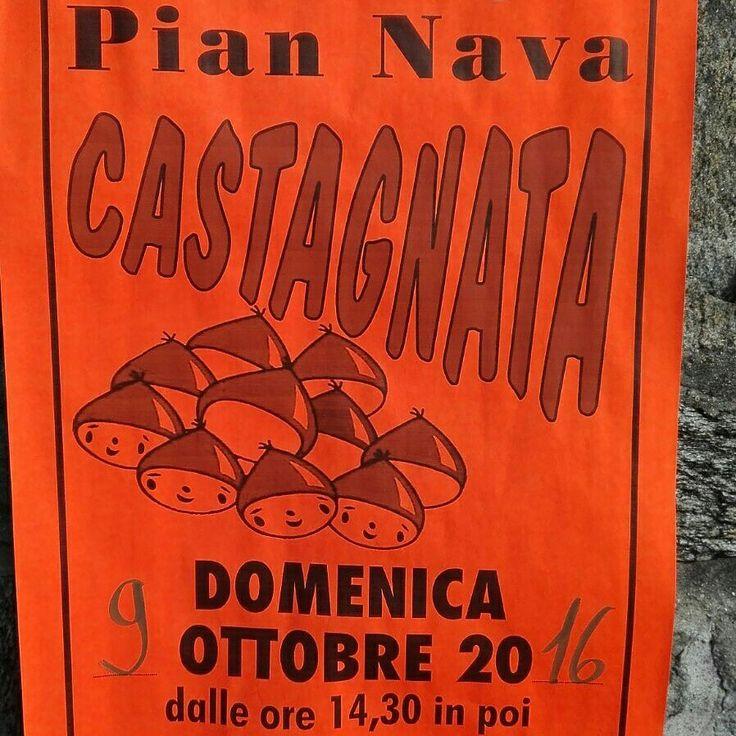 Castagnata d'autunno a Pian Nava!