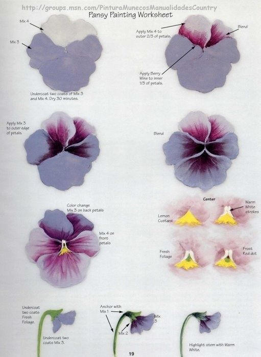Pansy worksheet by Priscilla Hauser.: