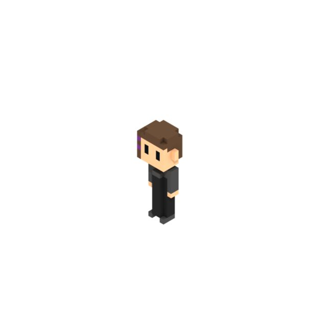 Voxel person