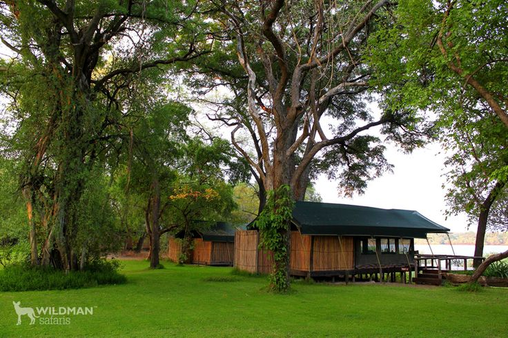 Mutemwa Lodge, Western Zambia. A unique and private tiger fishing lodge on the Upper Zambezi River with excellent accommodation, great guides and wonderful birding. Mutemwa Lodge, Western Zambia. A unique and private tiger fishing lodge on the Upper Zambezi River with excellent accommodation, great guides and wonderful birding. #africanlodges #zambia #travel #africantravel #tigerfishing