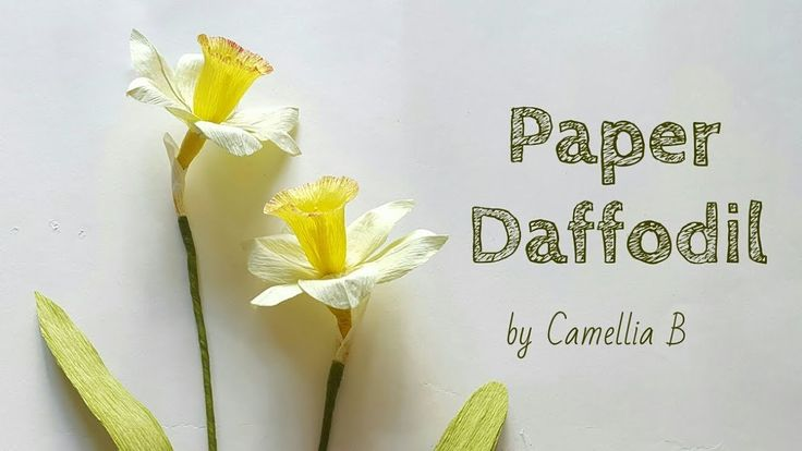 DIY- Paper Daffodils Flowers (Narcissus) from crepe paper - Hoa thủy tiê...