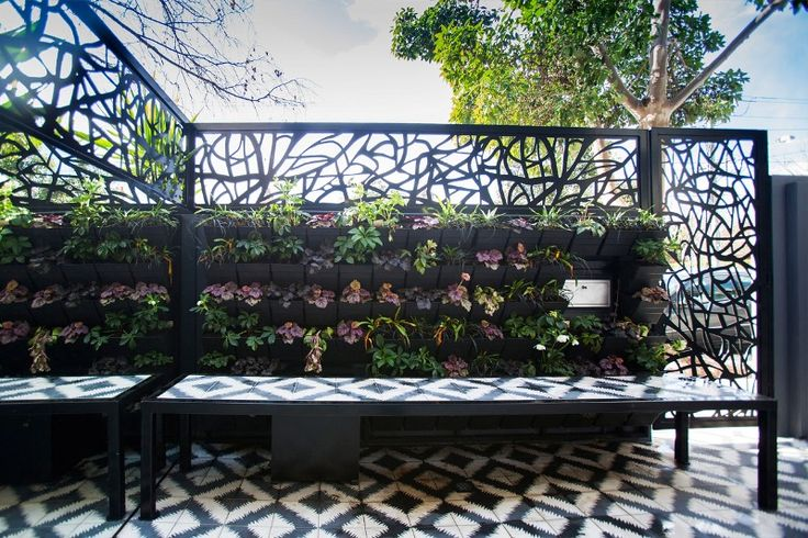 Contemporary organic laser cut & powder coated fence topper screens and decorative gate.