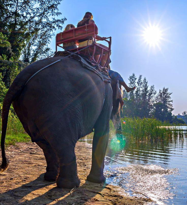 top thai ride