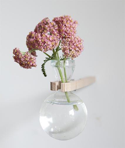 bloemenlab pskopie