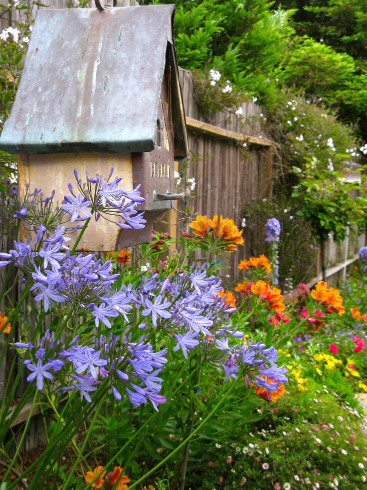 17 Best Images About Cottage Gardens On Pinterest