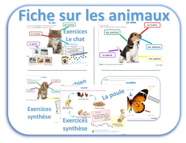 Pour que mes élèves s'entraînent à la lecture voici quelques fiches sur des animaux dont nous avons parlé en classe. Chaque élève a choisi un animal dont il parlera dans un exposé.  Articles similaires