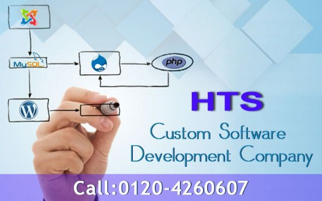 A reliable software development company has always pursued a well-defined procedure to give their clients a series of customized software development services