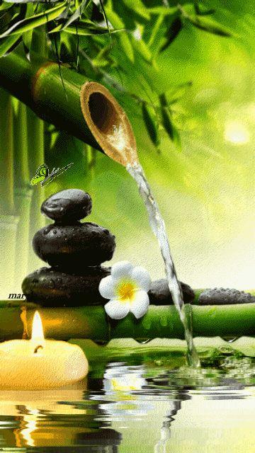 Água em movimento. Vida abundante***