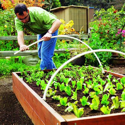 To cover newly planted seedlings with bird netting or season-extending row covers, simply bend two 6-foot pieces of ½-inch PVC pipe to form semi-circles, and slip their ends into the 1-inch pipes inside the bed.    Then drape the bird netting or row covers over them.