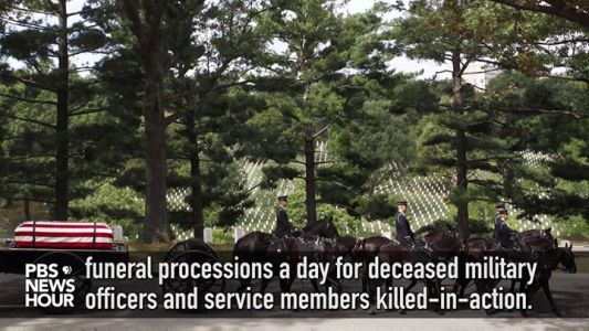 Theyve worked extremely hard for this country and honoring its fallen. Two military veterans horses who led funerals at Arlington National Cemeter #news #alternativenews