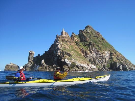 Kayak Cape Town: Kayaking the Cape!