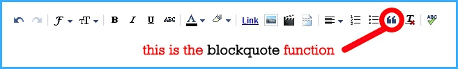 How to use blockquotes... Icey Designs