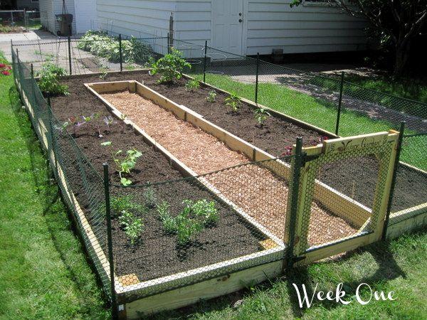 Stack of Cookbooks: Vegetable Gardening 101