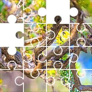 Vine Jumble Jigsaw Puzzle, 67 Piece Classic. Twisted branches of a vine like plant. Tree of jumbled curly