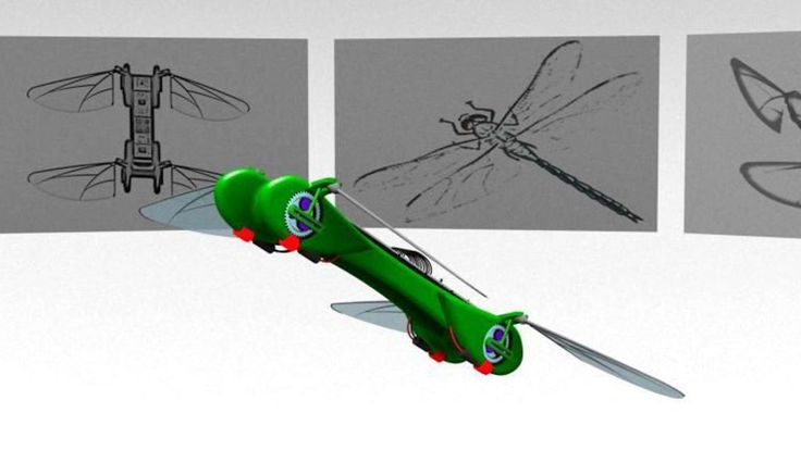 The TechJect Robot Dragonfly. www.indiegogo.com/robotdragonfly